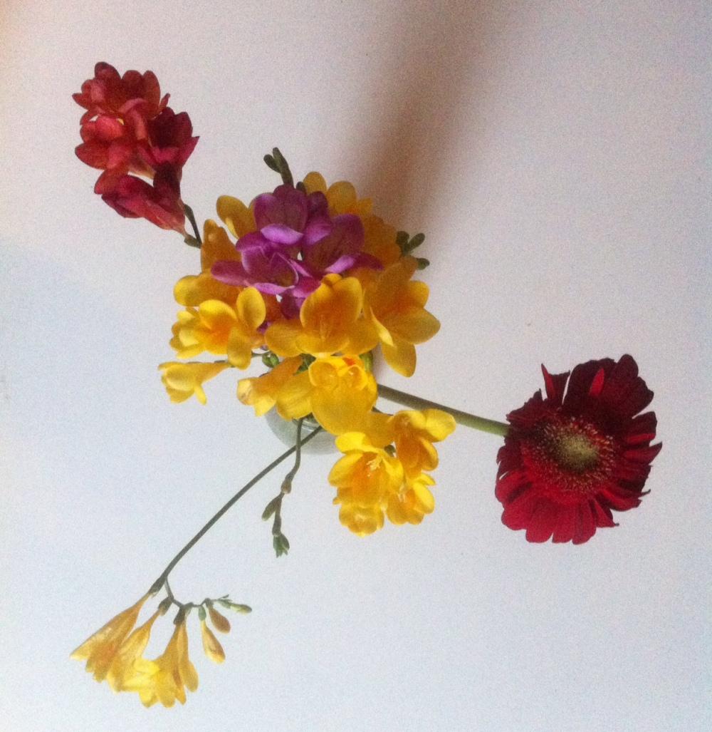 fiori recisi profumati